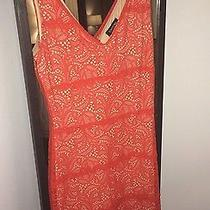 Bebe Coral Red Lace Dress Photo