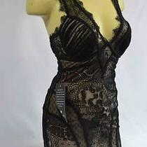 Bebe Dress Black Nude Lace v Neck Corset  Medium New  Photo