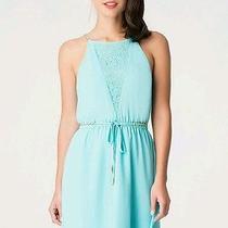 Bebe Dresses  Photo