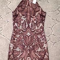 Bebe Lace Dress Photo