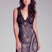 Bebe Lace Dress Size M Photo
