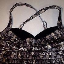 Bebe Lace Print Dress Photo