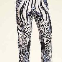 Bebe Medium Size Pants Photo