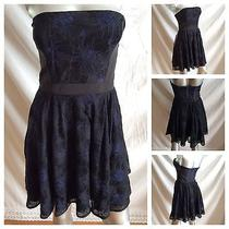Bebe Nwt Sexy Strapless Blue Black Lace Lily Corset Cocktail Dress Sz 2 140 Photo
