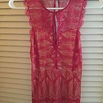 Bebe Red Lace Dress Photo