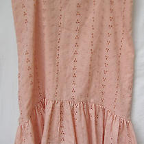 Bebe Skirt Size Medium Photo