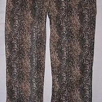 Bebe Snakeskin Print Pants Size 6 Photo