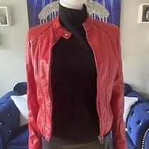 Bebe Vegan Leather Moto Jacket - Red W/ Cheetah Print Lining - Large Photo