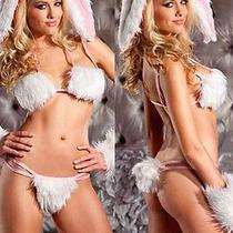 Bedroom Playful Naughty Sexy Women Fantasy Bunny Costume Women's Sexy Lingerie Photo