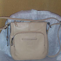 Beige Fossil Crossbody Bag Photo