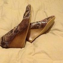 Beige Shoes 7.5 Bandolino Photo