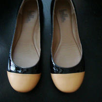 Belle Sigerson Morrison Nib Black Blonde Patent Kid Tuscan Calf Flats Shoes Us 8 Photo