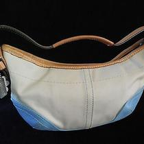 Best Buy Coach4431 Daisy Hobo Baguette Shoulder Handbag Photo