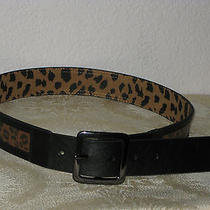 Betsey Johnson Black & Brown Animal Print  Women Belt Size M New Without Tags Photo