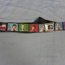 Big Bang Theory Seat Belt. Buckle Down Belt. Car Seat Belt. Photo