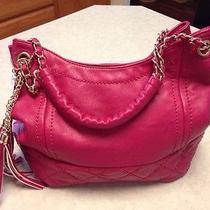 Big Buddha Handbag Cute Photo