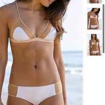 Bikini Cali Dreaming Photo