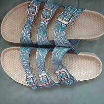 Birkenstock Birkis Dolphin Blue Embossed Sandals Sz 10 Womens  Photo