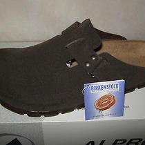 Birkenstock Clogs 10 M (Nib) Alpro  Mocha Brown