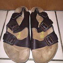 Birkenstock for Men Photo