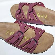 Birkenstock Granada Burgundy Sandals Eu 37 Us 6 Narrow New Womens Slides  Photo