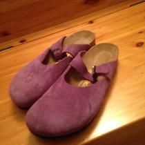Birkenstock - Rosemead - Purple - Size 40n Photo