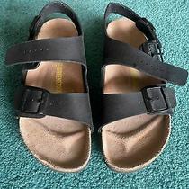 Birkenstock Sandals Size 42 Black Strap on Great Condition Men's 9 Women's 11 Photo