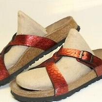 Birki's Birkenstock Womens 6 37 Strappy Slides Germany Made Flat Sandals Shoes Photo
