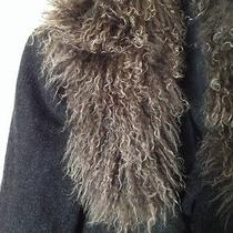 Bisou Bisou Coat 10 Euc Gray Tan Curly Fur Trim 100% Wool Coat Vogue Stunning Photo