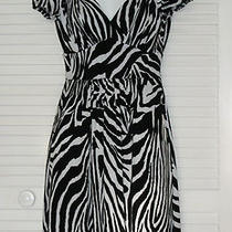 Bisou Bisou Sz4 Fancy v-Neck Black & White Zebra Print Dress Cap/slv Knee Lngth Photo