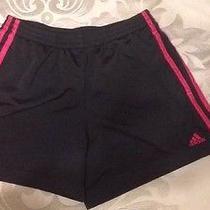 Black and Pink Adidas Shorts Photo