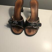 Black and Tan Coach Sandals Size 7 Photo