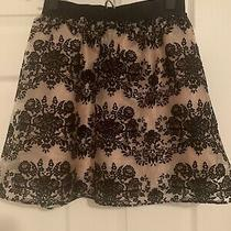 Black and Tan Express Fit and Flare Short Skirt Size Xs Photo