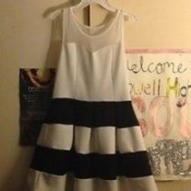 Black and White Skater Dress Photo