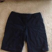 Black Bermuda Shorts Photo