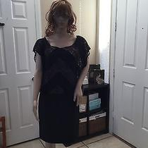 Black/blush Dress Lace Photo