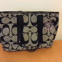 Black/grey Coach Handbag Photo