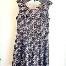 Black Lace Dress With Blush Underlay Photo
