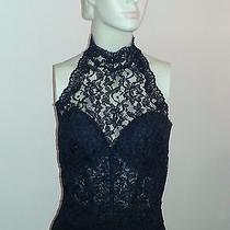 Black Lace Halter Top Photo