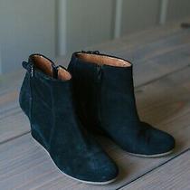 Black Lanvin Booties - Size 38 Photo