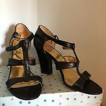 Black Learher Coach 7.5m Open Toe Sandal  Photo