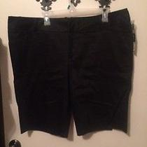 Black Womens Shorts Photo