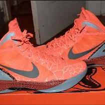 Blake Griffin Hyperdunk All Star Game Size 12  Photo