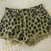 Blank Nyc Shorts 27 Animal Print Acid Yellow  Photo