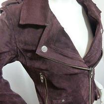 Blanknyc Blank Nyc Purple Suede Leather Women's Moto Motorcycle Jacket M Medium Photo