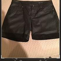 Blanknyc Genuine Leather Shorts Photo