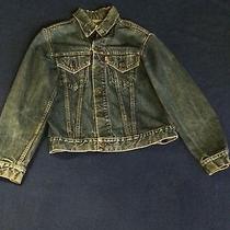Blue Levi Denim Jacket Photo