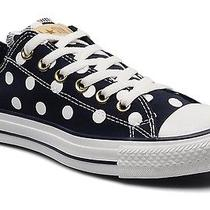 Blue Polka Dot Converse Photo