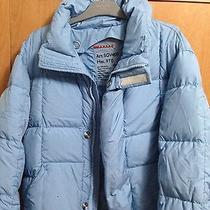 Blue Prada Down Winter Coat  Photo