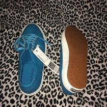 Blue Superga Photo
